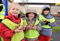 3 Girls from the Rainbow Grp clutching daffodil bulbs.